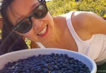 icelandcloseup.com picking wild blueberries