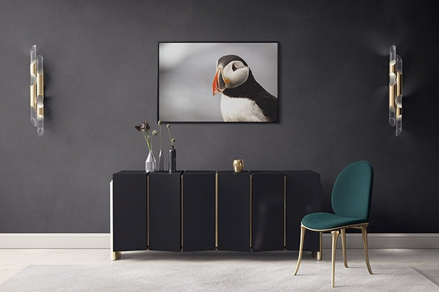 Puffin Close-Up Canvas Print